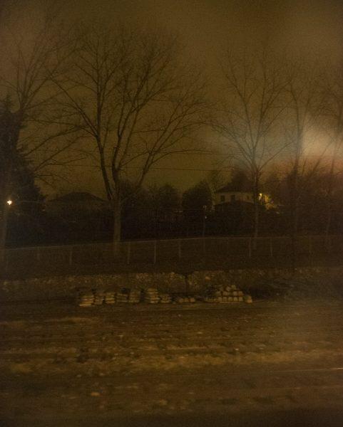 arbres dans la brume Puy-en-Velay dans le train photo couleur de Guy Monnet de la série Murmure de lumière